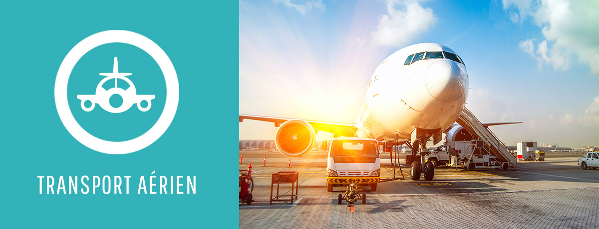 Transport Ivoire Aérien